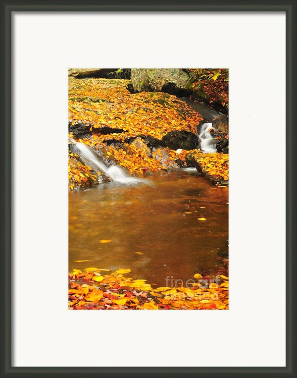 New Hampshire Stream Framed Print By Catherine Reusch  Daley