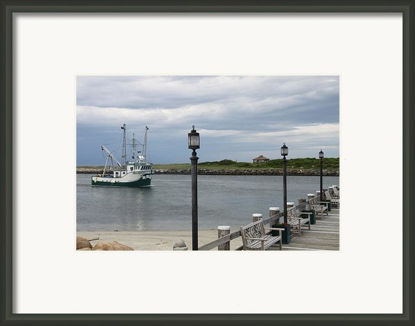 New Species Head Back Framed Print By Christiane Schulze Art And Photography