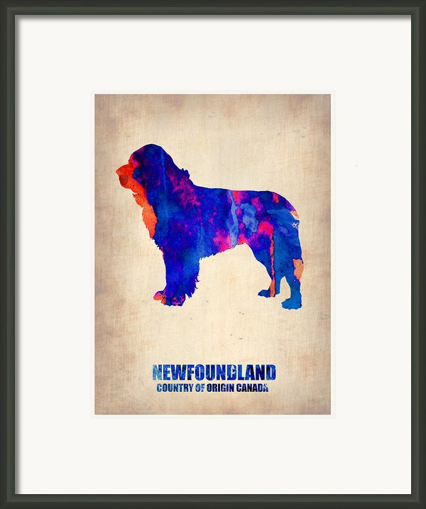Newfoundland Poster Framed Print By Irina  March