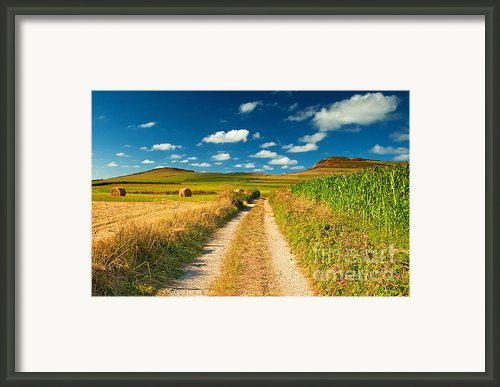 Nice Landscape Summer Framed Print By Boon Mee