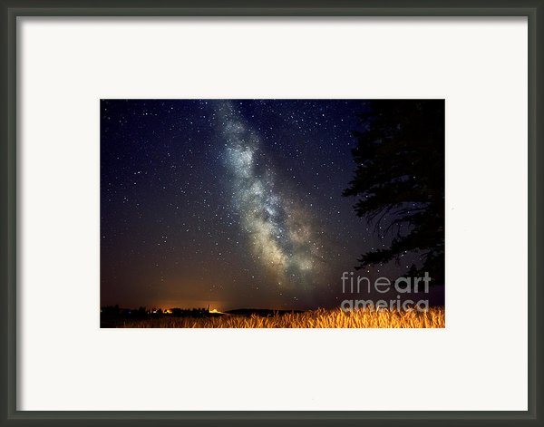 Night Moves Framed Print By Reflective Moments  Photography And Digital Art Images