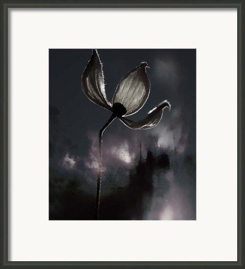 Nights I Wrote  Framed Print By Jerry Cordeiro