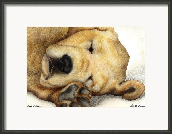 Nipper Nap... Framed Print By Will Bullas