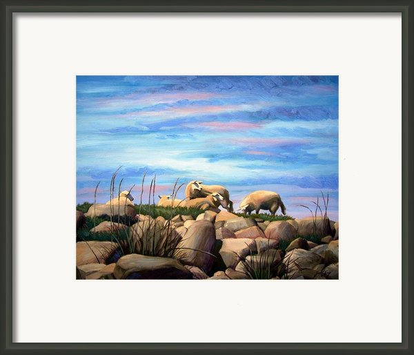 Norwegian Sheep Framed Print By Janet King