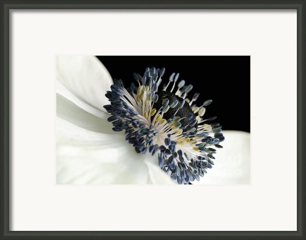 Not All Black And White Framed Print By Mark Johnson