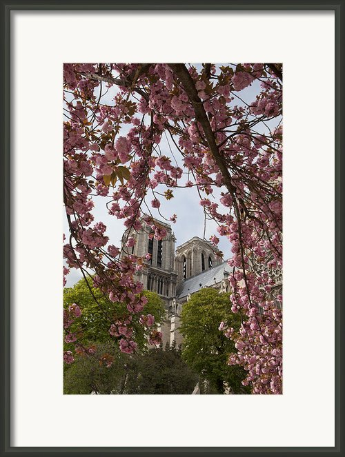 Notre Dame 1 Framed Print By Art Ferrier
