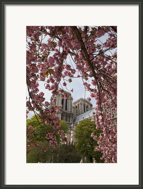 Notre Dame 1 Framed Print By Art Ferrier