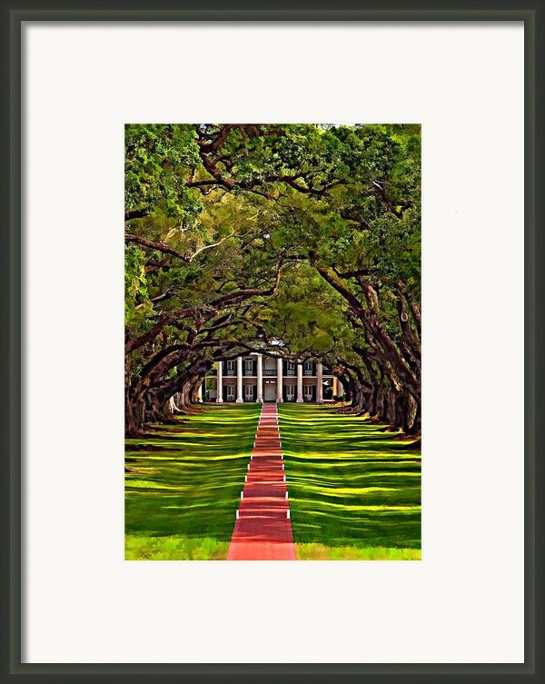 Oak Alley Ii Framed Print By Steve Harrington