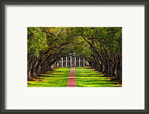 Oak Alley Paint  Framed Print By Steve Harrington
