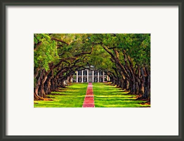 Oak Alley Paint Version Framed Print By Steve Harrington