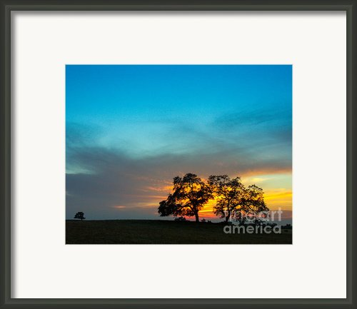 Oaks And Sunset 2 Framed Print By Terry Garvin