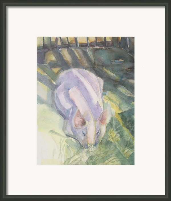 Ode To A Pig Framed Print By Grace Keown