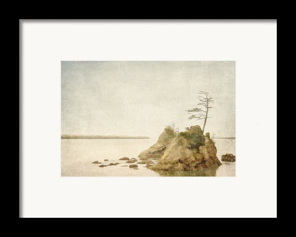 Offshore Rocks Oregon Coast Framed Print By Carol Leigh