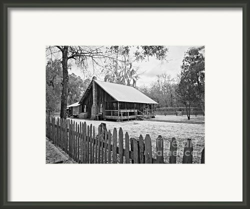 Okefenokee Home Framed Print By M J Glisson