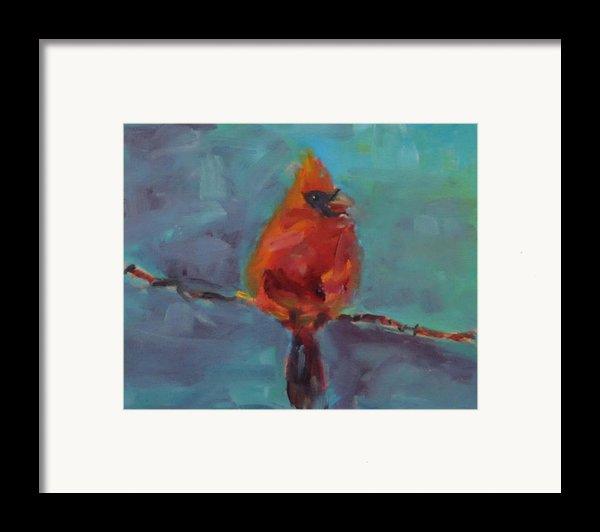 Oklahoma Cardinal Framed Print By Susie Jernigan