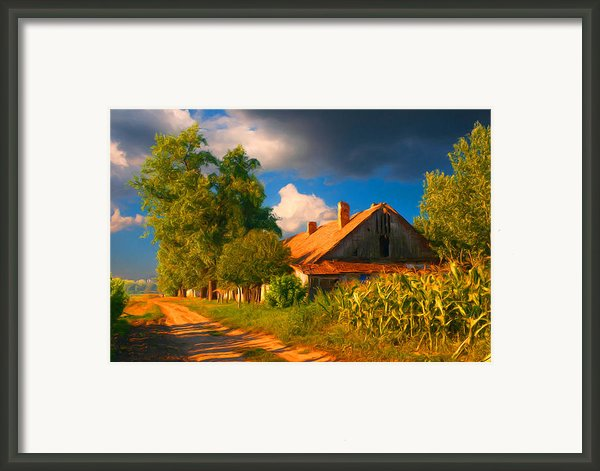 Old Farm On The Country Side Framed Print By Sasa Prudkov