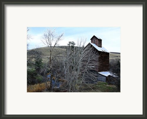 Old Grain Barn Framed Print By Steve Mckinzie
