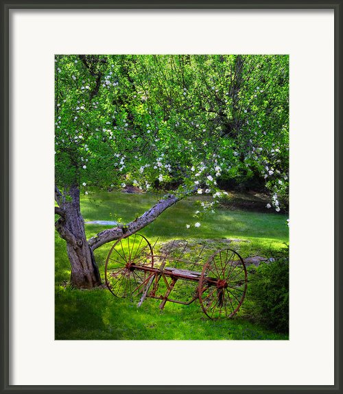 Old Hayrake Framed Print By Thomas Schoeller