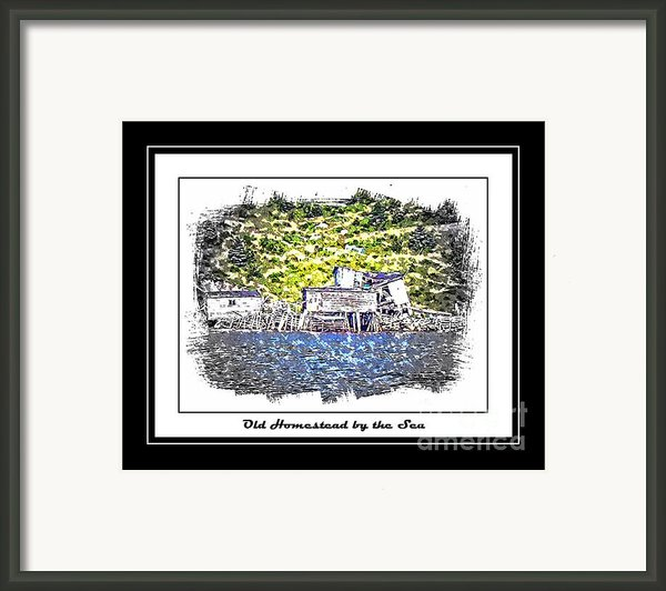 Old Homestead By The Sea Framed Print By Barbara Griffin
