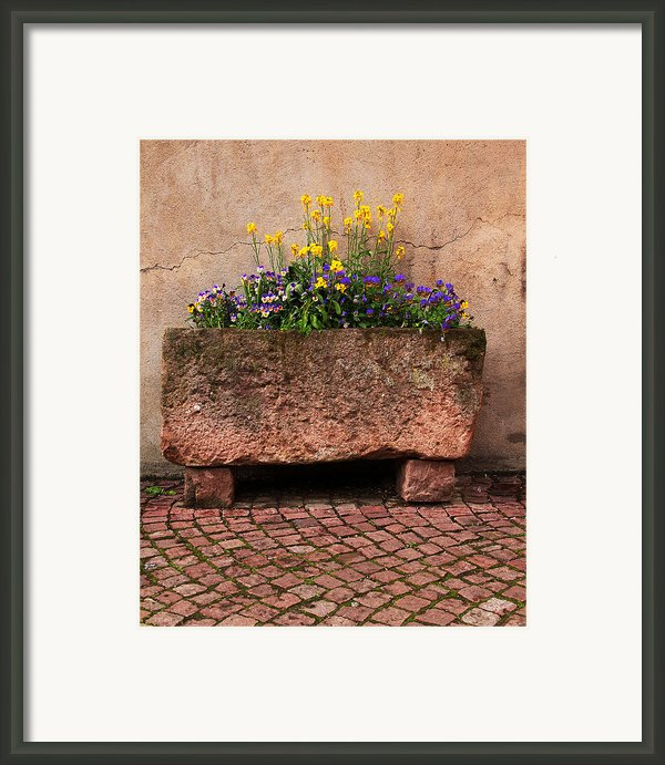 Old Stone Trough And Flowers In Alsace France Framed Print By Greg Matchick