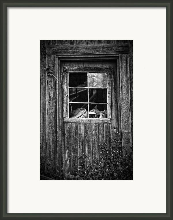 Old Window Framed Print By Garry Gay