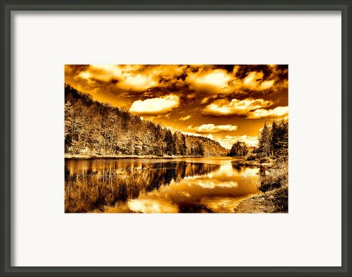 On Golden Pond Framed Print By David Patterson