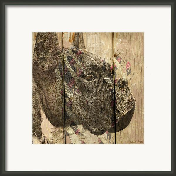 On The Fence Framed Print By Judy Wood