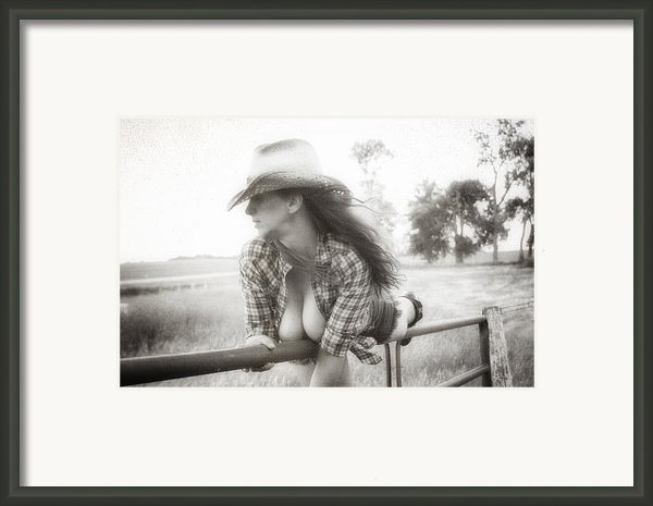 On The Fence Framed Print By Todd And Candice Dailey