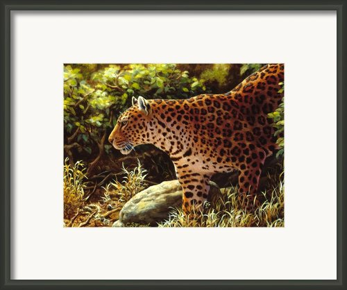 On The Prowl Framed Print By Crista Forest