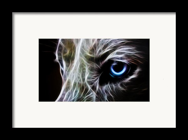 One Eye Framed Print By Aged Pixel