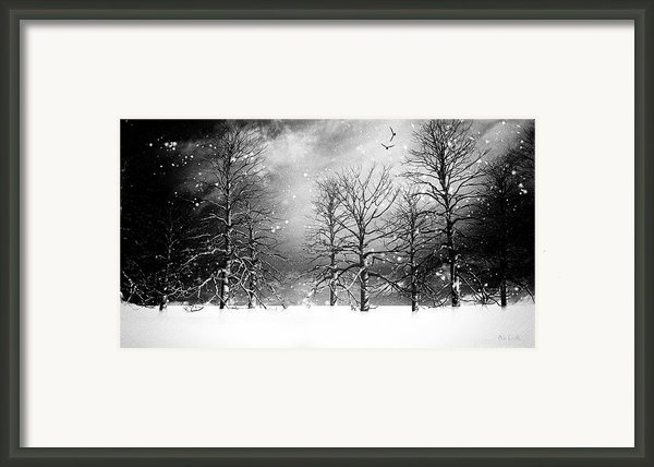One Night In November Framed Print By Bob Orsillo