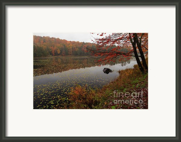 One Of The Worcester Ponds Framed Print By Charles Kozierok