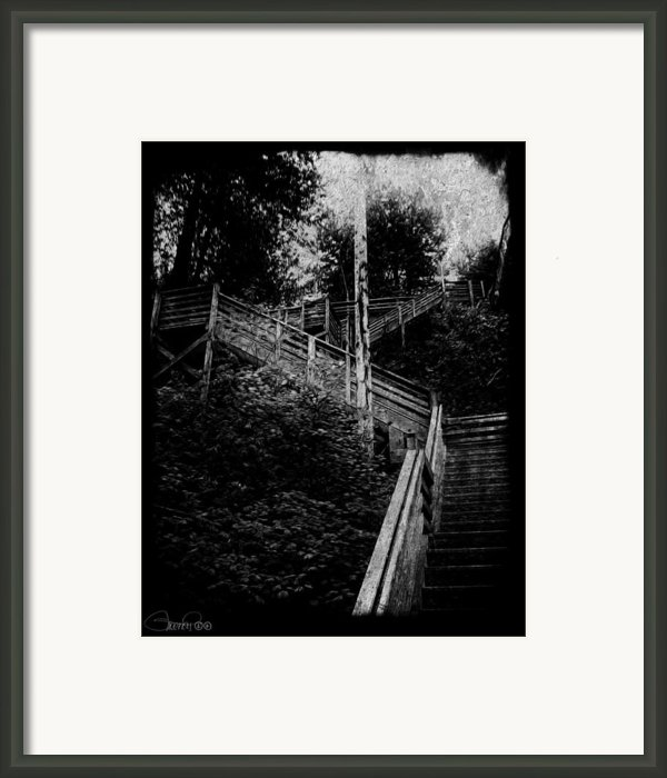 One Step At A Time Framed Print By Sheena Pike