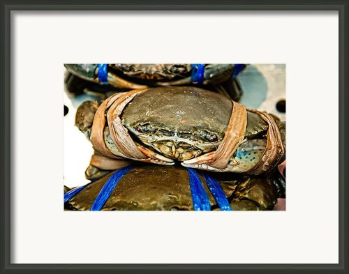 Ooh Crab Framed Print By Dean Harte