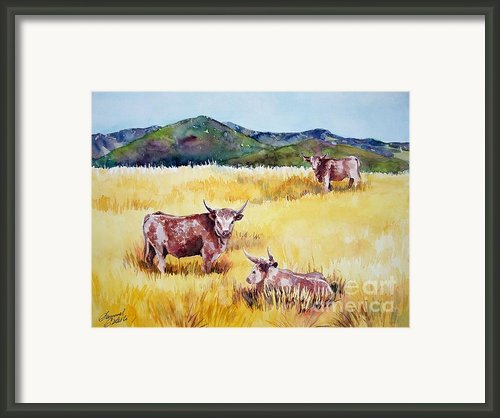 Open Range Patagonia Framed Print By Summer Celeste