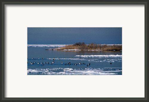 Open Water Framed Print By Skip Willits