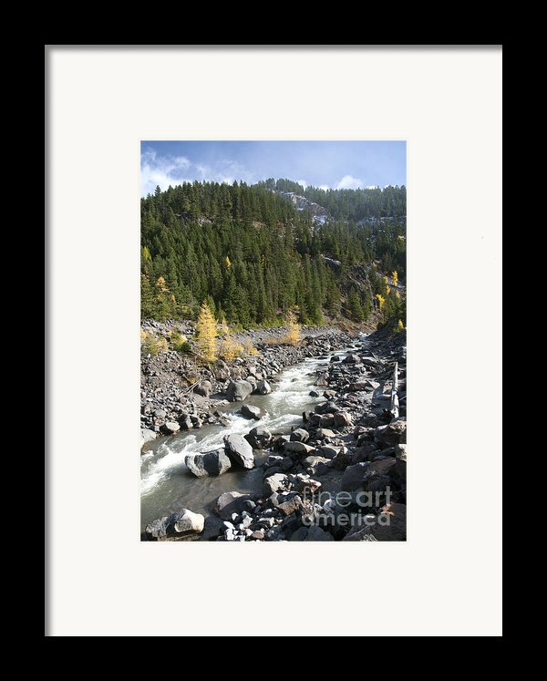 Oregon Wilderness Ii Framed Print By Peter French