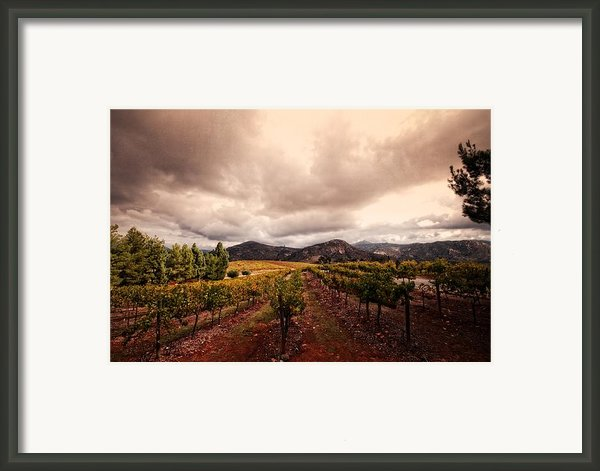 Orfila Framed Print By Ryan Hartson-weddle