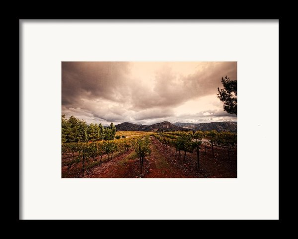 Orfila Framed Print By Ryan Weddle