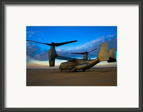 Osprey Sunrise Series 1 Of 4 Framed Print By Ricky Barnard