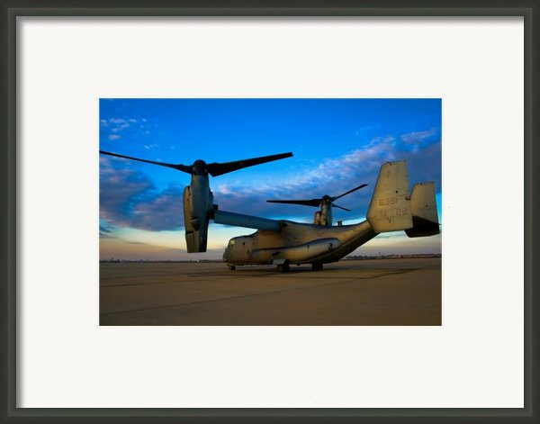 Osprey Sunrise Series 1 Of 4 Framed Print By Ricky Barnard