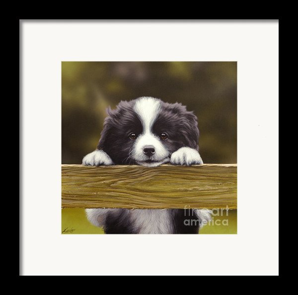 Over The Fence Framed Print By John Silver