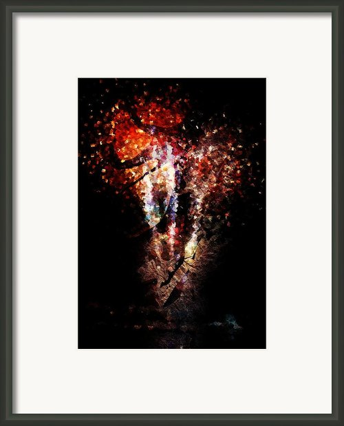 Painted Fireworks Framed Print By Andrea Barbieri