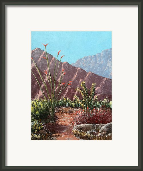 Palm Desert Beauty Framed Print By Jeff Owen