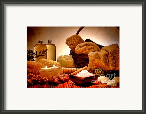 Pampering Framed Print By Olivier Le Queinec