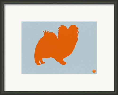 Papillion Orange Framed Print By Irina  March