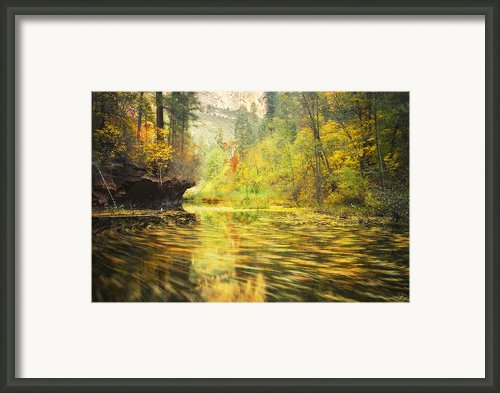 Parade Of Autumn Framed Print By Peter Coskun