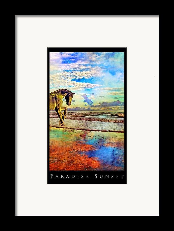 Paradise Sunset Framed Print By Betsy C  Knapp