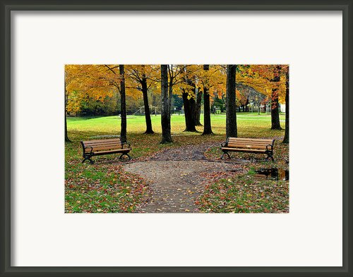 Park Bench Framed Print By Robert Harmon