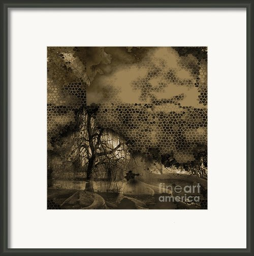 Path Framed Print By Yanni Theodorou